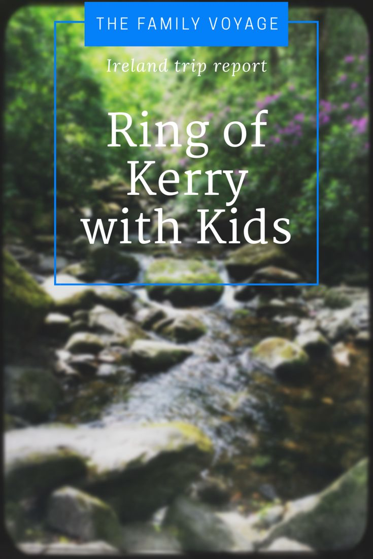 Ireland with kids trip report for family travel on the Ring of Kerry. Follow along as we visit Torc Falls,  Sheep Farm and Staigue stone fort.