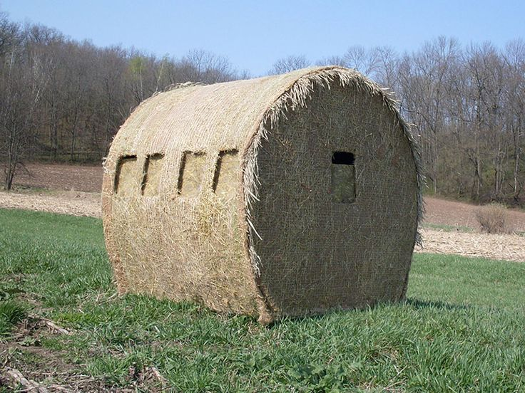 Deer Stands | Deer Stands, Hunting Blinds - Okay, I'm not a hunter but, this is genius. Ryan and Devan need this!!!