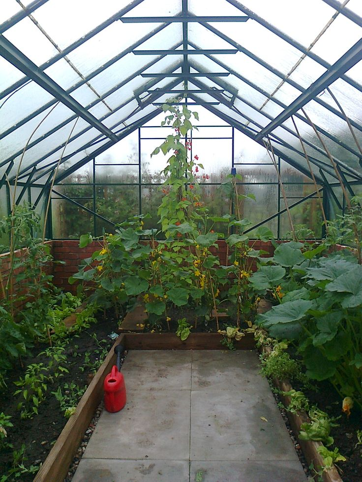 165 best greenhouse images on pinterest greenhouse plans for Do it yourself greenhouse plans