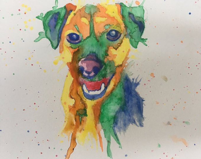 Angus!  What a gorgeous boy!  Watercolour pet portraits available from Pretty Poppy by Sally on Etsy