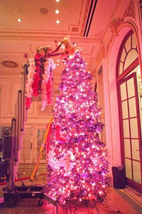 The 25+ best Eloise at christmastime ideas on Pinterest ...