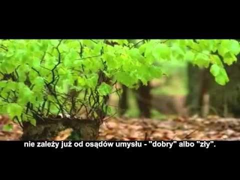 Akceptacja świata zewnętrznego: - Nadzwyczajni.pl