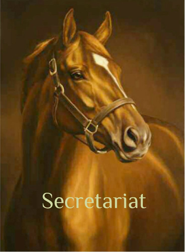 SECRETARIAT There were great one's after him, but none like Secretariat! Loved him, not only for his winnings but, this beautiful Animal had personality ..he was human like!! Secretariat - The Life & Times Of An American Racing Legend  http://www.youtube.com/watch?v=agfEJZhEMyI=youtu.be
