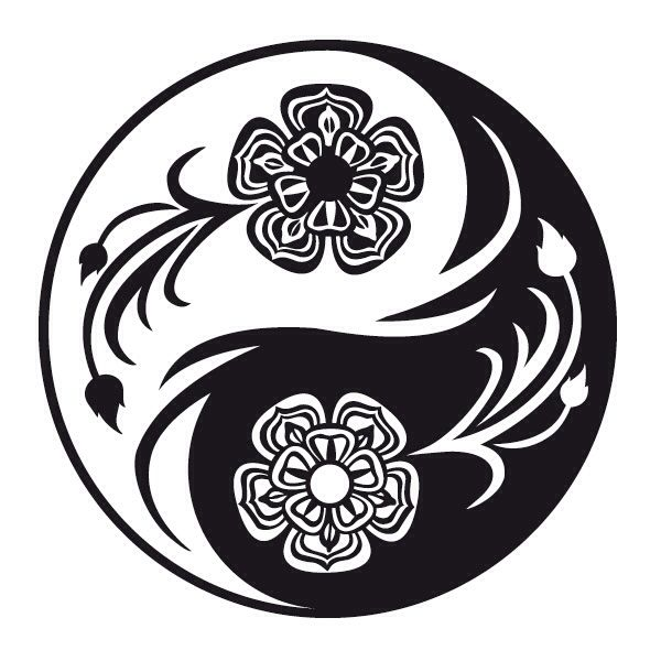 the yin and yang of american The dragons up the yin yang trope as used in popular culture in a visual work that features east asian mysticism or cinematic martial arts,  american dragon:.