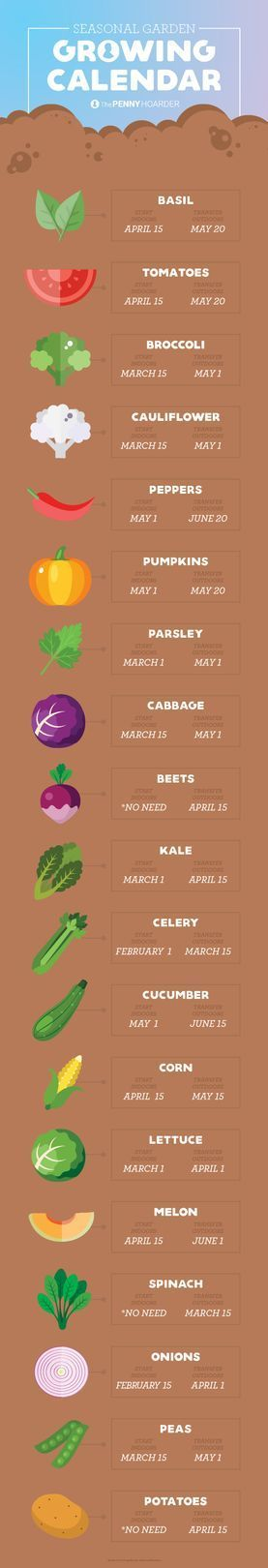 Planting a vegetable garden is a fantastic way to save money on groceries -- as long as you make sure to plant the most cost-effective veggies. Here's how to plant a garden that lets you make the most of your time and effort by helping you decrease your food budget. Ready to get dirty and plant that backyard garden?
