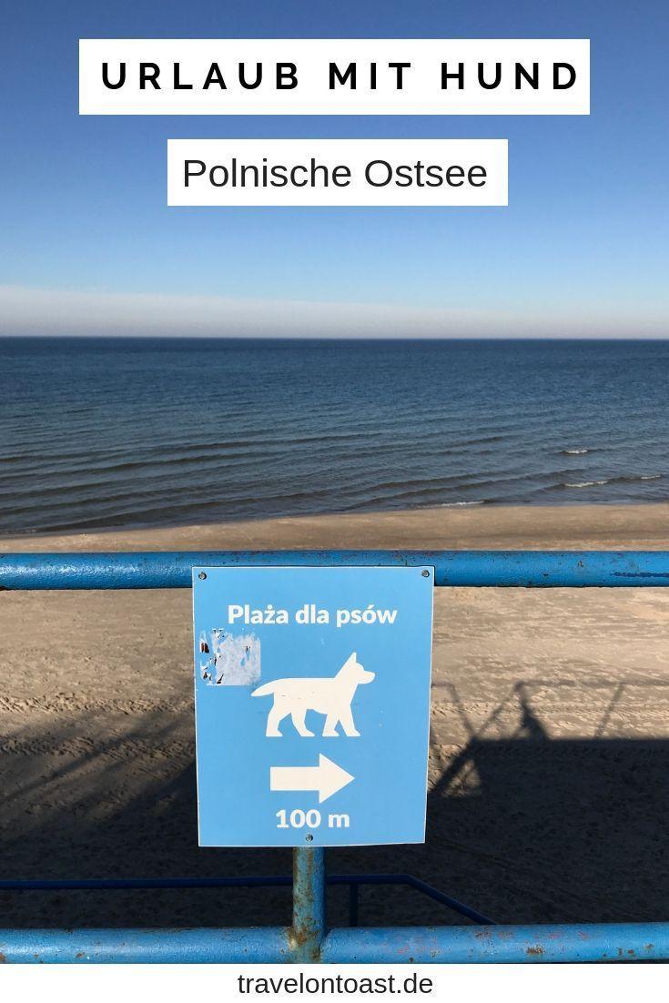 Polnische Ostsee Kolberg Urlaub 2020 Erfahrungen Und Tipps Travel On Toast Urlaub Mit Hund Urlaub Ostsee Urlaub