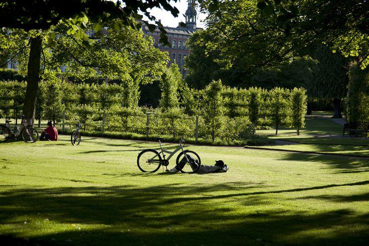 Kongens Have in Copenhagen. Chilling in the park.
