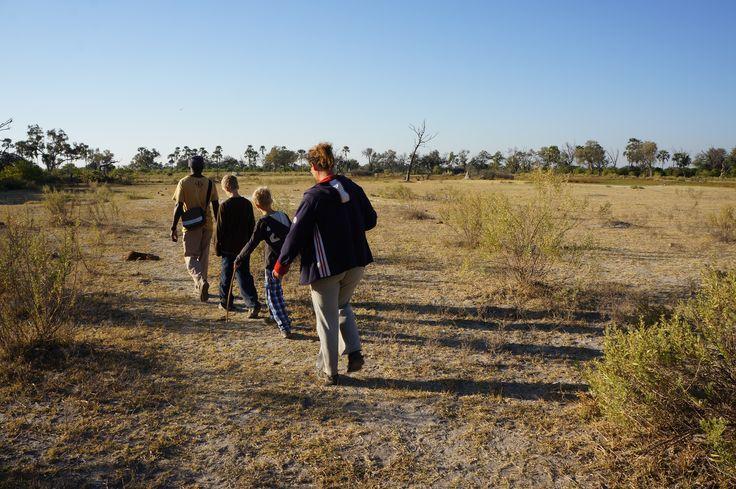 LiveToSeeAfrica team on a walking safari in Okavanga Delta