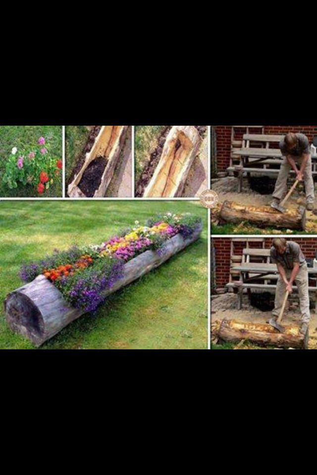 Log Garden