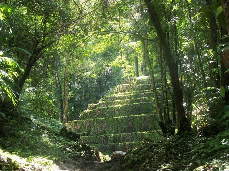 Getting close to Yaxchilan - Ancient Maya site in Mexico. By Suzanne Nolan