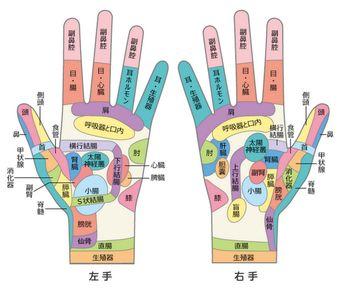 手も足と同様に体全体に関わるツボがたくさん。ツボを探すコツは、押した箇所だけが痛いのではなく全身に響く痛みを感じる場所を見つけること。