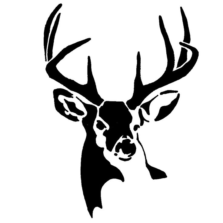 Whitetail Buck Deer Stencil | Animal Silhouettes, Vectors ...