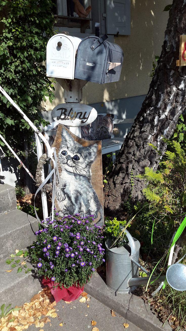 Heidrun Blünys Katzencafe, Treffpunkt für Katzenliebhaber, Informationen, Seminare und Gespräche zur Katzenpflege in angenehmer Atmosphäre mit netten Menschen