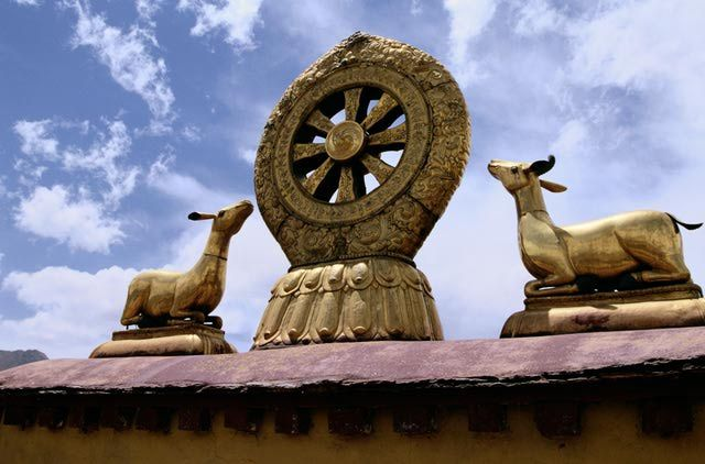 The dharma wheel or dharmachakra is a symbol of Buddhism. What does the wheel represent? And why do the number of spokes vary from one wheel to the next?