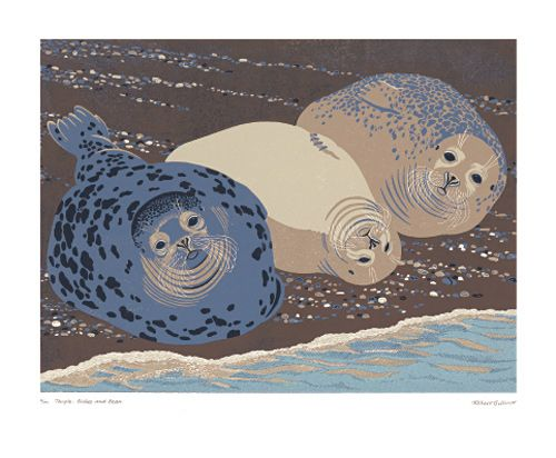 Robert Gillmor       Example of colour reduction printing