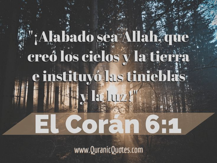 #77 El Corán 06:01 (Surah al-An'am) Praise be to Allah, Who created the heavens and the earth, and made the darkness and the light. Yet those who reject Faith hold (others) as equal, with their Guardian-Lord.