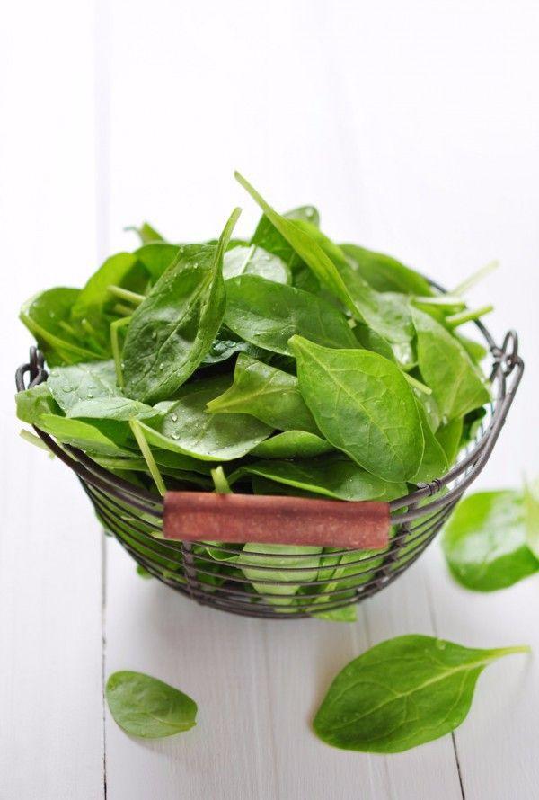 Retrouvez des recettes faciles pour cuisiner les épinards frais, des conseils pour savoir comment les préparer, les conserver et pour connaitre leur saison!