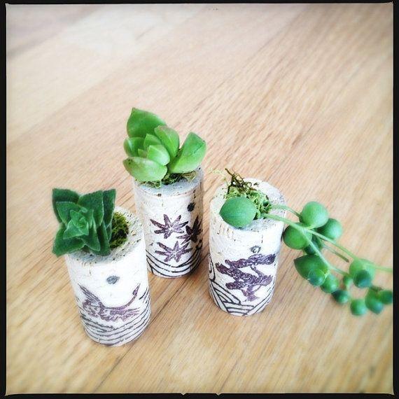 DIY Succulent Mini Garden Wine Corks Zen Chrysanthemum by AiyaHMPH