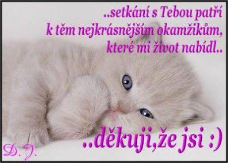 Láska a citáty - Fotoalbum - Obrázky o lásce - Obrázky o lásce - Děkuji...