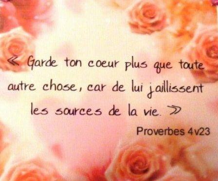 """La Bible - Versets illustrés - Proverbes 4:23 - """"Garde ton coeur plus que toute autre chose, car de lui jaillissent les sources de la vie""""."""