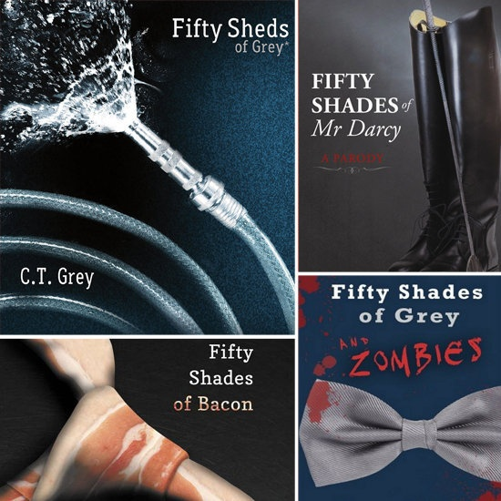 Best Fifty Sheds Of Grey Ideas On Pinterest Angelina Jolie - Nerd rewrote 50 shades of grey 50 nerds of grey