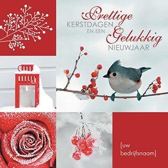 Kerstkaart met een mooie compilatie van rode afbeeldingen. Zoals een rode roos, een rode lantaarn en rozenbottel. http://www.goededoelkerstkaarten.nl/nl/producten/kaart/133058