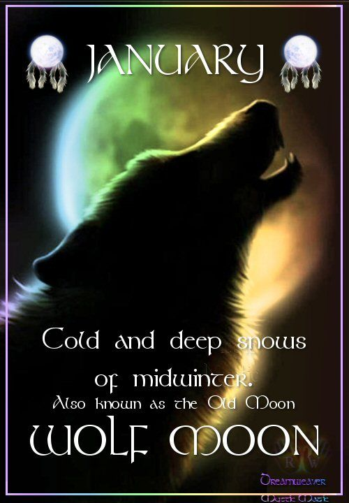 Moon:  JANUARY ~ WOLF #MOON: Also known as the Old Moon. Cold and deep snows of midwinter.