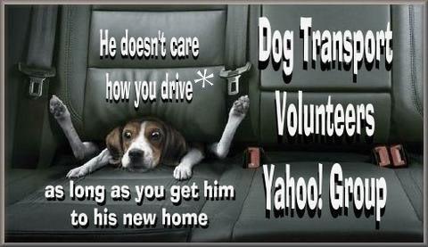 GetHimHome--Dog Transport Volunteer Yahoo! Group