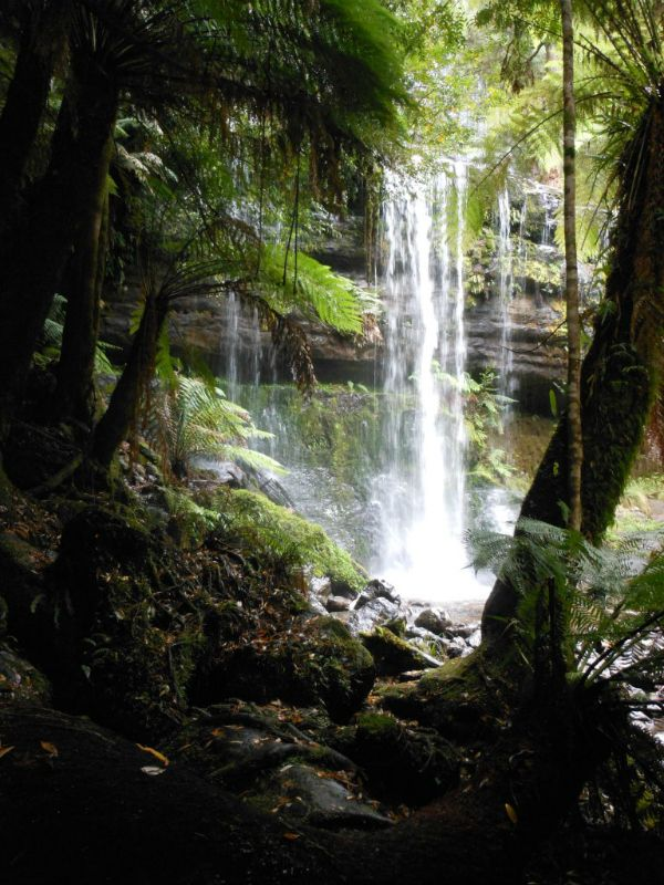 Russell Falls, Mt Field National Park. Article and photo by Max Hidding for Think #Tasmania.
