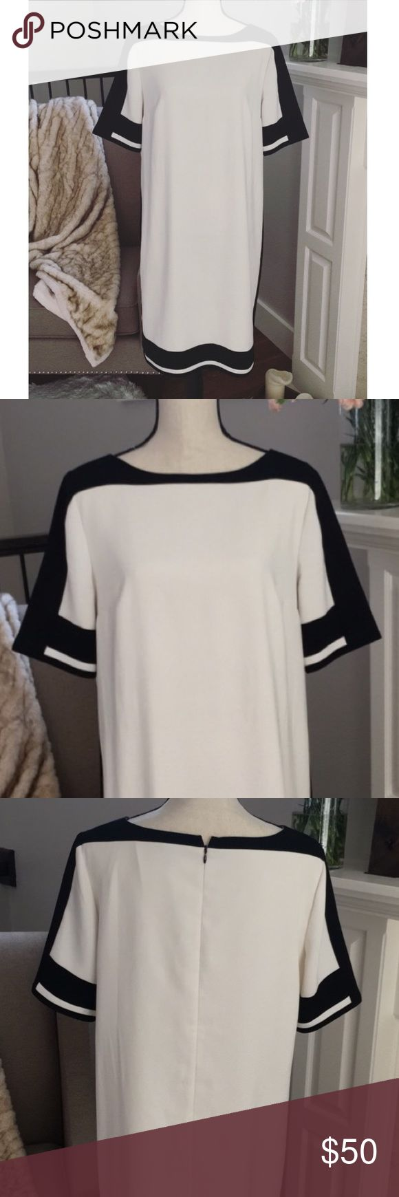 White Colorblock Dress Beautiful White Belted Colorblock Dress W/O belt Ann Taylor Dresses Midi