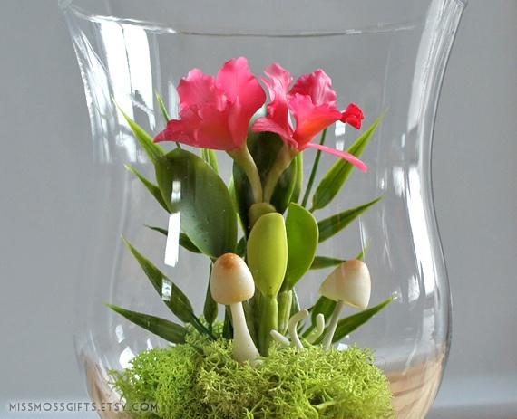 Miniature Pink Cattleya Orchid Terrarium in Vintage Glass