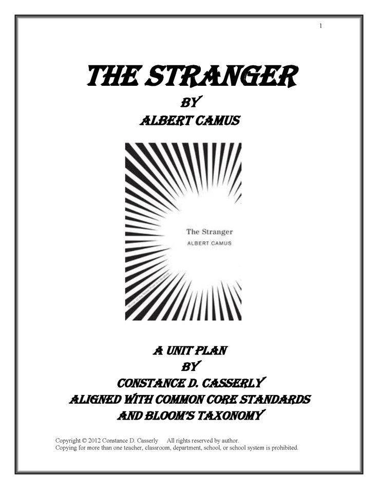 the stranger essay topics