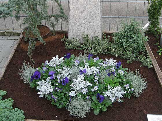 Bildergebnis für grabbepflanzung allerheiligen – Grabgestaltung