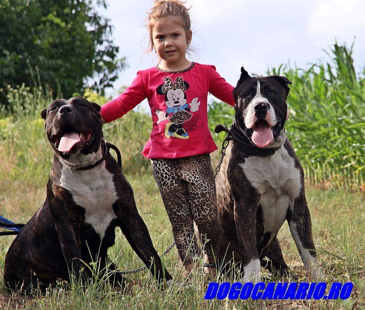 Samira with Roy and Bora Presa Canario