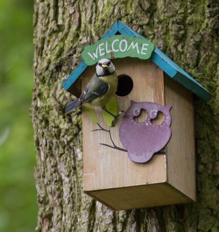 SEMANA DE LAS CAJAS NIDO - DEL 8 AL 12 DE ABRIL. Durante esta semana te pedimos que pongas una #cajanido para #pájaros en tu casa, jardín o en un área natural cercana. Con esta acción ayudarás a aumentar el número de lugares apropiados para la cría de muchos pájaros salvajes. https://wnature.org/setmana-caixes-niu/ #RefugiosWN