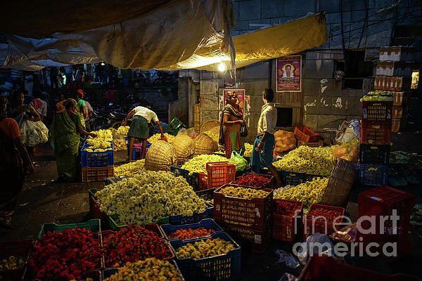 Koyambedu Chennai Flower Market Early Morning.  Photography by Mike Reid