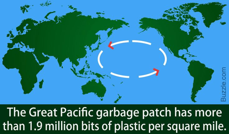 Startling Facts About Ocean Pollution You Need to Know Right Now