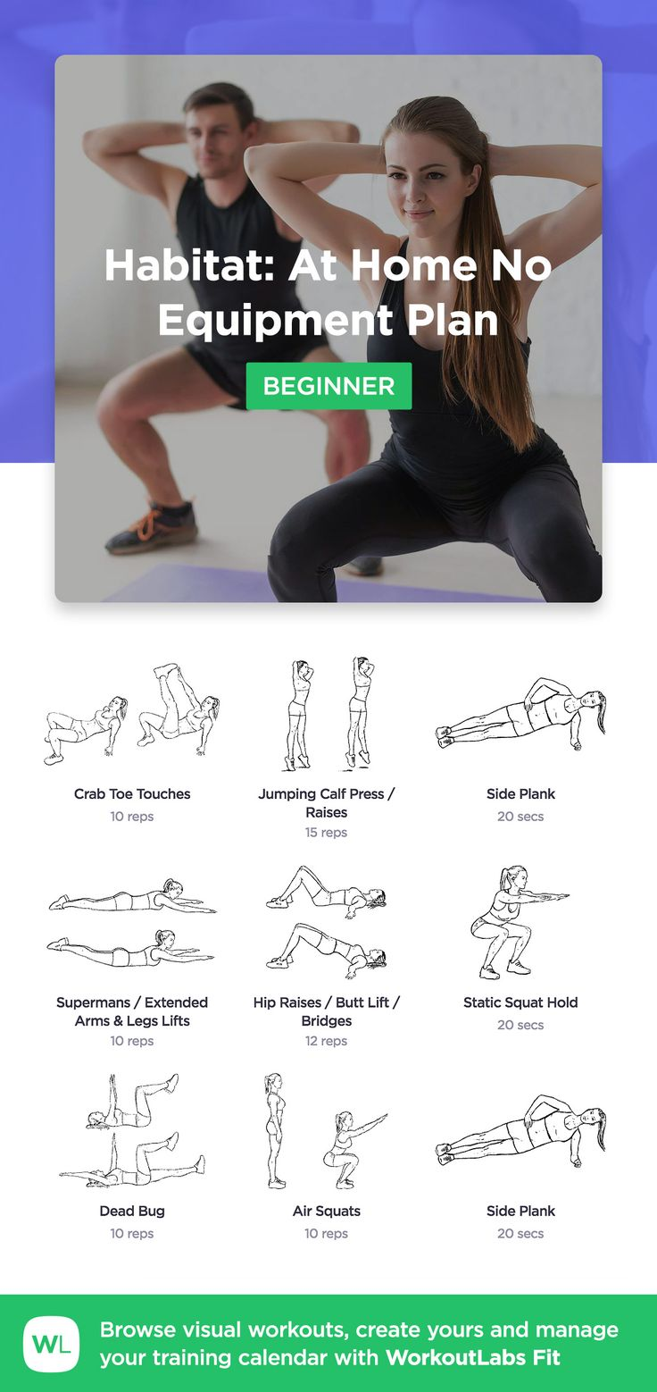 Habitat: At Home No Equipment Plan for beginners by WorkoutLabs Fit · View and download printable PDF: https://workoutlabs.com/s/finjx