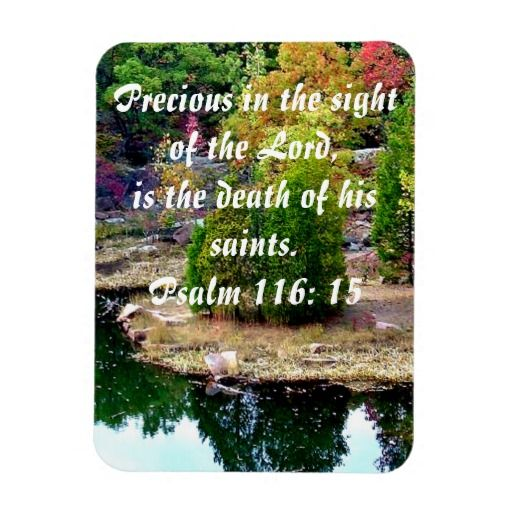 Precious in the sight of the Lord is the death of his saints. Psalm 116:15