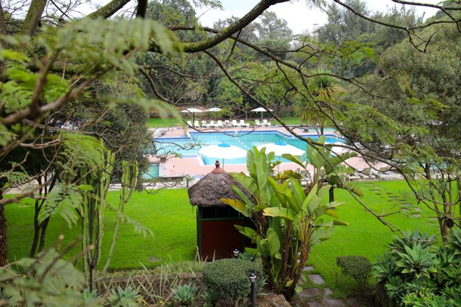A thermal pool - a little oasis from the hustle and bustle of Addis Ababa, Ethiopia. For more family friendly accommodation ideas, see our website http://www.suitcasesandstrollers.com/articles/view/family-friendly-hotels-addis-ababa #GoogleUs #suitcasesandstrollers #travel #kids #hotels #FamilyVacation #travelwithkids #familytravel #familyholidays #familyvacations