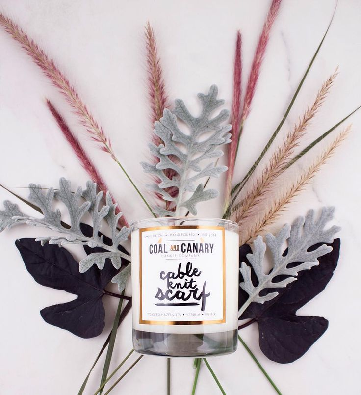 Our favourite Fall scents from Coal and Canary 🍂🍁🍃