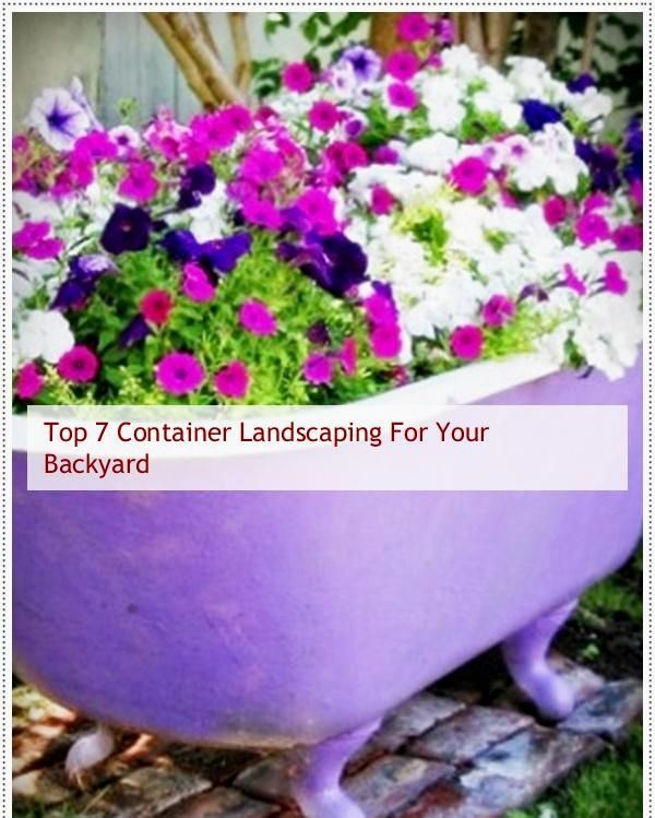 Container Gardening Plans, Container Landscaping Backyard Ideas