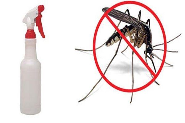 A leghatékonyabb szúnyogriasztó spray házilag - készítsd el te is!