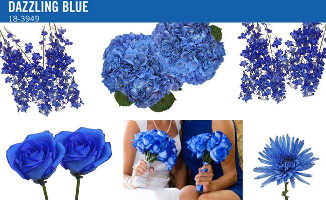 Pantone Spring 2014 - Dazzling Blue