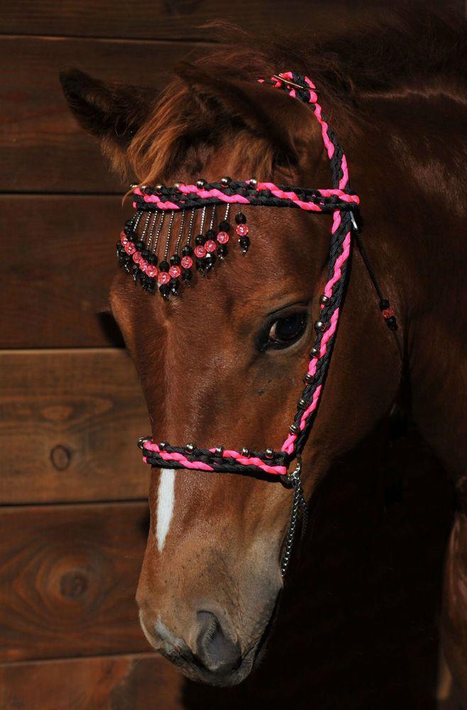 Miniature Horse Tack   eBay                                                                                                                                                                                 More