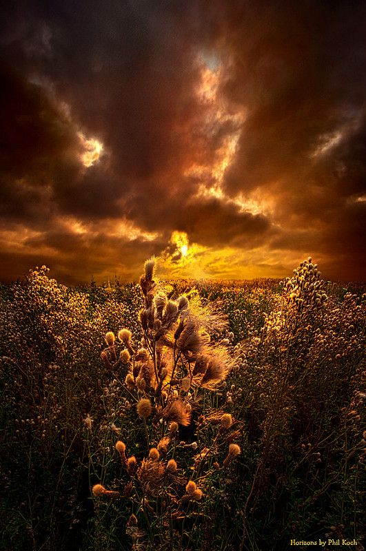 Within Peace and Solitude | par Phil~Koch