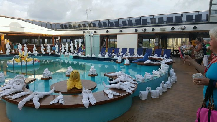 Picture of The animals took over the pool - Carnival Pride