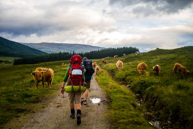 Winners of the 2012 Photo Competition | Walk The West Highland Way