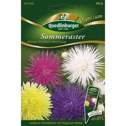 schones schone herbstblumen erfreuen unser auge im september standort abbild und fcbccc riesen