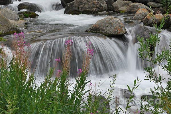 Waterfall in Parchers Resort near Bishop, California